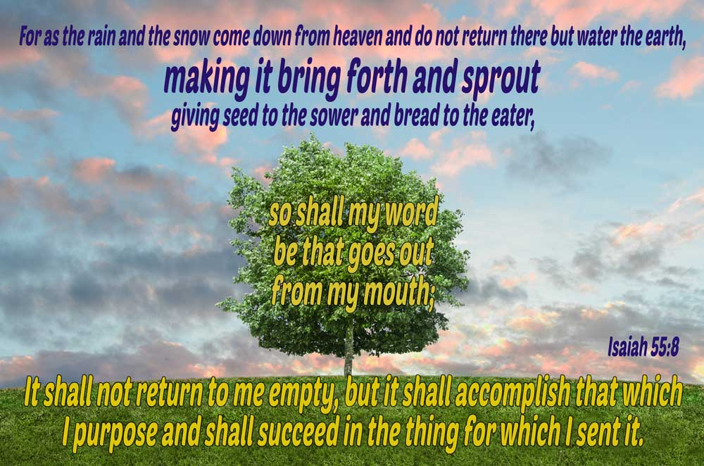 My Word Shall Not Return Empty