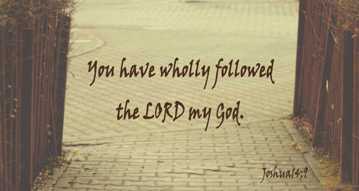 You Have Wholly Followed the Lord - Joshua 14:9