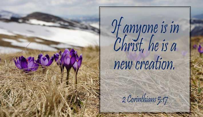 New Creation In Christ - 2 Corinthians 5:17